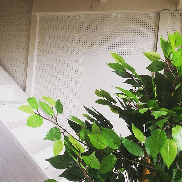 スタジオの壁に絵を描いてもらってます。どんな壁になるか楽しみ♪名古屋市千種区スタジオエチュード引山店です今日も元気にオープンしましたースタジオのご予約、レッスンのお問い合わせはお電話でお待ちしてまーす♂️ tel 052-760-6607 名二環引山インターからすぐ 守山区 尾張旭市 名東区からのアクセスもしやすいよ♪ #音楽教室 #レッスン #スタジオ #防音室