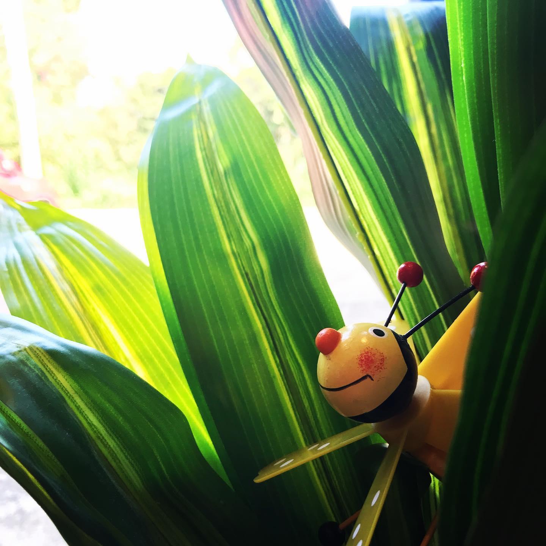 昨日は蒸し暑かったけど、今日は爽やかな秋晴れですね。スタジオエチュード引山店は、芸術の秋に向けて楽器練習カラオケ等の目的でもご利用頂けます❣️#全室空気清浄機完備 #安心安全施設 #コロナ対策 #名古屋市千種区 #香流橋東 #インスタスポット#スタジオ #音楽スタジオ #リハスタ #リハーサルスタジオ #ライブ配信 #生配信 #17live #17ライブ #17ライブ配信 #ワンセブン#ワンセブン配信 #インスタライブ #インスタ配信 #ツイキャス#ツイキャス配信#レコスタ #レコーディングスタジオ #音楽教室 #個人練習 #バンド練習 #レンタルオフィス #レンタルスペース#ハンモック